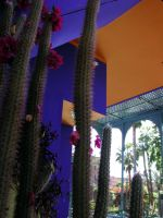 Maison Majorelle 3 by casefr