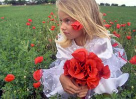 Poppy Girl 3- Stock by little-girl-stock