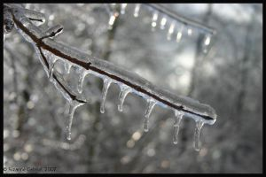 Icicles by Nariane