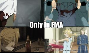 Only In FMA by AlphaMoxley95