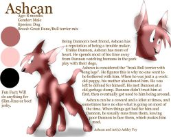 Character referance: Ashcan by xAshleyMx