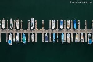 Vertical Alignment by Shoayb