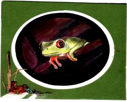 Tree frog watercolor by drcj10