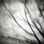 fragmented by eiknop
