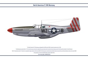 Mustang USAAF 309th FS 1 by WS-Clave