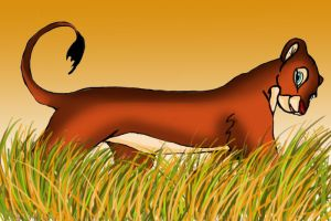 lion in the grass by lindaatje