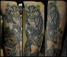 owl healed by karlinoboy