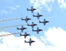 Snowbirds in formation by VacantHaze