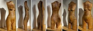 Firewood torso 4 by carvenaked