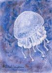 White Spotted Jellyfish by RachelLaughman
