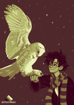 Palette Meme - Hedwig and Harry #11 by Rattenfanger