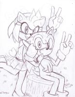 Sonic and Amy Yesterdays Dream by heitor-jedi