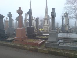 Foggy at the cemetery 12 by rudeturk
