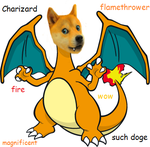 doge charizard by Rytrom27