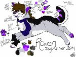 Raven- Fall/Winter 2014 Official Ref. by AgentAnarchy