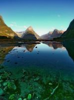 Milford Sound waters by crh