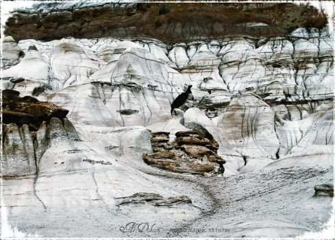 Rock Faces by BeWylde