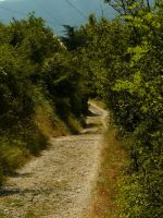 Path 7 by YsaeddaStock