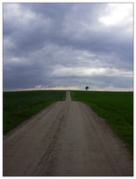 Road by guiseppe