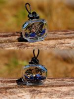 Steampunk Reliquary of Magnus Alexander by DarcarinJewelry