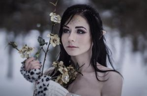 Winter fairy by Lady-I-Hellsing
