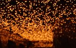 BOKEH in red to use by M3los93