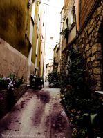 Alley by tomaplaw