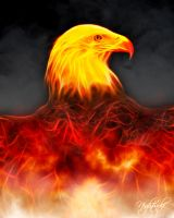 burning-Eagle-fractal by Tom-in-Silence