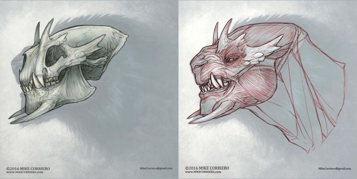 Snarling Beast Skull and Musculature by MIKECORRIERO