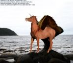 Terrible Winged Horse by coussey
