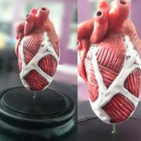 Attack on Titan, Colossal Titan Heart by MarcMacabre