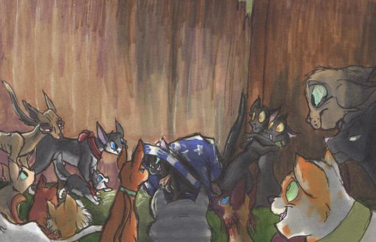 Witching cats and ally cats by FrankiLew