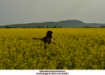 Miha3lla model in yellow flower field  (6) by Miha3lla