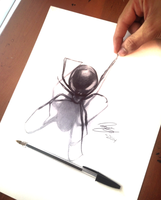 3D Spider drawn with ballpoint pen by Tariqfisher