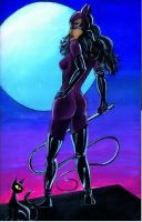 Catwoman and Moon by vanahowell