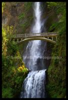 Multnomah Falls by LoneWolfPhotography