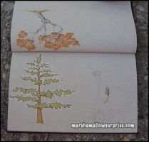 Brown Sketchbook Pg 5 by Twitchy-Kitty-Studio