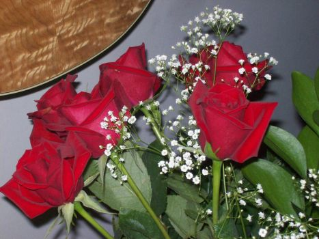 Red Roses 2 by Poopyhead613