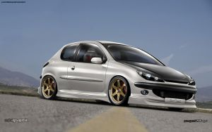 Peugeot 206 gt by edcgraphic