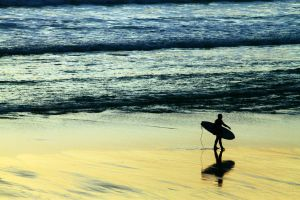Ultimate Surfer by MisterPoulpe