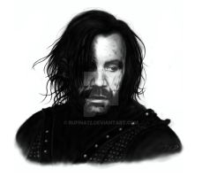 The Hound by Rufina72