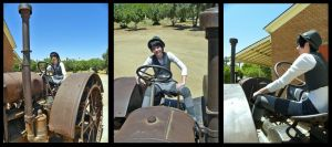 Tractor by Toiea