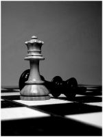 Chess by birdswithoutwings