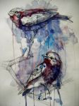 Purple Finches by FinchFight