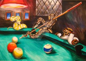 Billiard Ball Pythons by DragonCid
