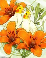 Cockatiels and Day Lilies by KiriMothDesigns