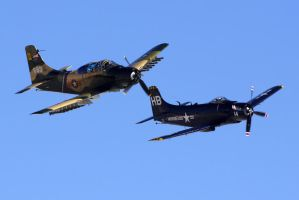 Skyraider Duo by shelbs2