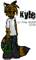 Kyles new look .:color:. by Kyle-the-hedgehog