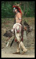 Native American Dance Dress 2 by vampyrmistress