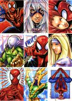 Spider-Man Archives sketches 5 by Axebone